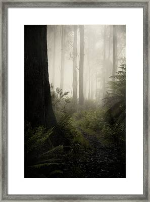 From Darkness Framed Print