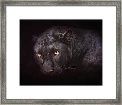 From Darkness Framed Print by Ron  McGinnis