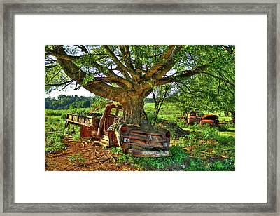 1954 Chevrolet Flatbed From Death To Life  Art Framed Print by Reid Callaway