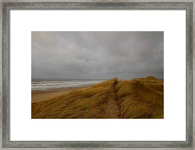 From Dunes To Sea Framed Print