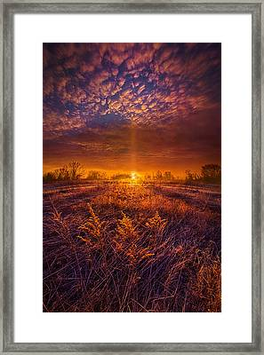 From Here I Walk Framed Print by Phil Koch