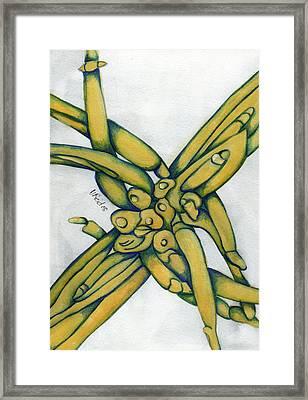 From My Garden 2 Framed Print by Versel Reid