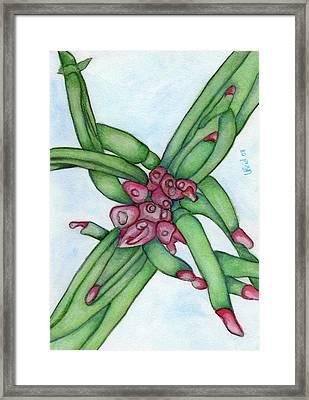 From My Garden 3 Framed Print by Versel Reid