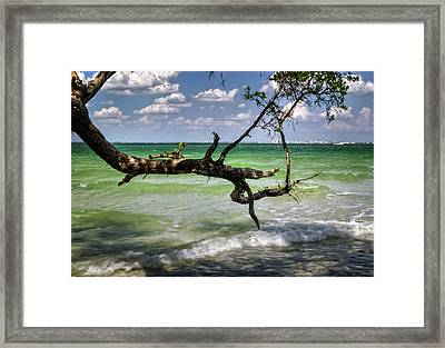 From Sanibel To Fort Myers Framed Print