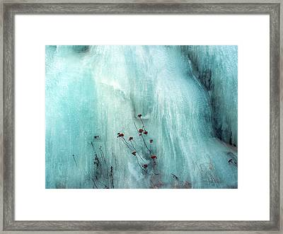 From The Ice... Framed Print
