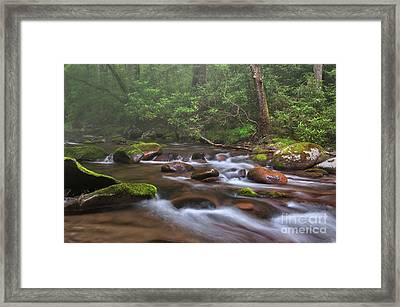 From The Mist - Oconaluftee River Framed Print by Thomas Schoeller