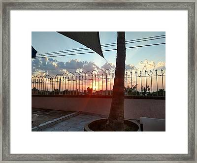 From The Patio Framed Print by Staci Black