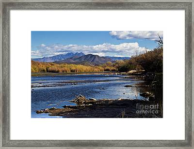 From The Salt Framed Print by Kathy McClure