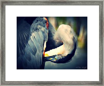From The Series Great Blue Number 1 Framed Print