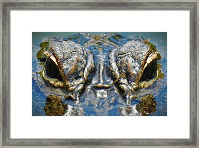 From The Series I Am Gator Number 7 Framed Print