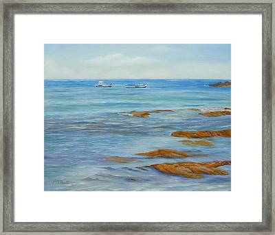 From The Shore Framed Print by Angeles M Pomata