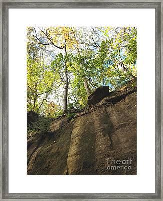 From Under The Trees Framed Print by Scott D Van Osdol