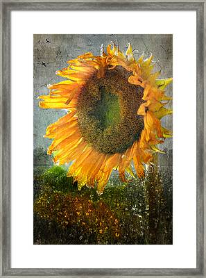 Framed Print featuring the photograph From Whence It Came.. by John Rivera