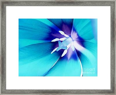 From Within Framed Print by Krissy Katsimbras