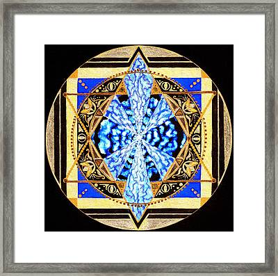 From Within Framed Print by Pam Ellis