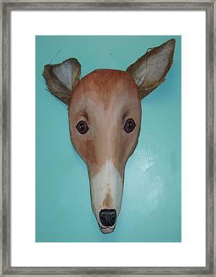 Frondly Greyhound Framed Print