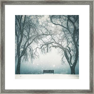 Front Row Seat Framed Print by Debi Bishop