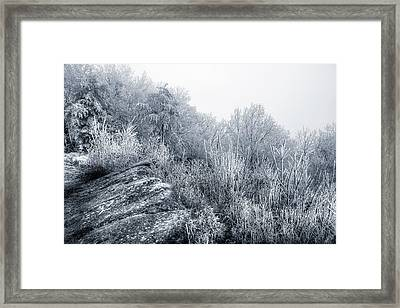 Frost At The Top Framed Print by Mike Eingle