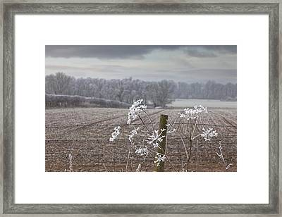 Frost-covered Rural Field Cumbria Framed Print by John Short