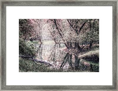 Frost In The Trees Framed Print by Debra and Dave Vanderlaan