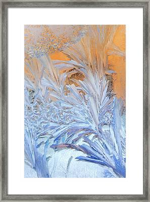 Frost Patterns On Window Framed Print