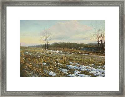 Frost Framed Print by Stephen Bluto