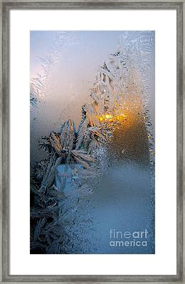 Frost Warning Framed Print by Pamela Clements
