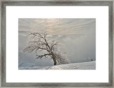 Frostbite Framed Print by Sebastien Coursol