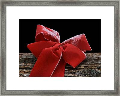 Framed Print featuring the photograph Frosted Bow by Nikolyn McDonald