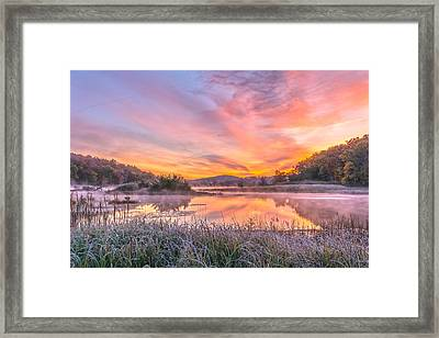 Frosted Dawn At The Wetlands Framed Print