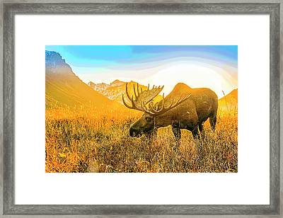 Frosted Grass For Breakfast Abstract Framed Print