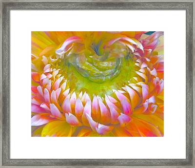 Frosted Framed Print by Gwyn Newcombe