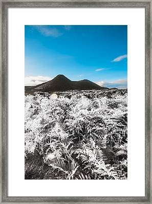 Frosted Over Hinterland Framed Print by Jorgo Photography - Wall Art Gallery