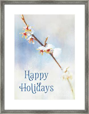 Frosted Witch Hazel Blossoms Holiday Card Framed Print
