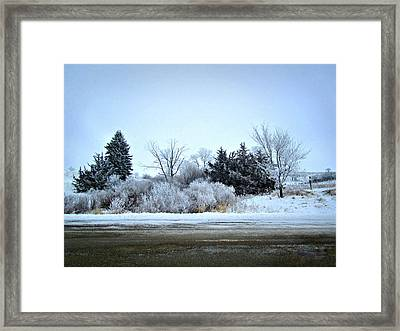 Frostie Framed Print