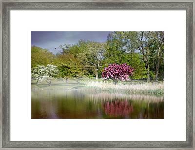 Spring Frosting Framed Print
