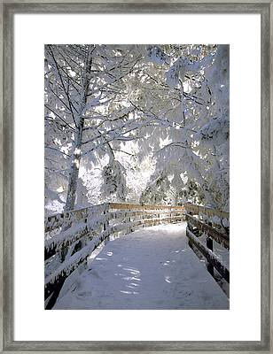 Frosty Boardwalk Framed Print
