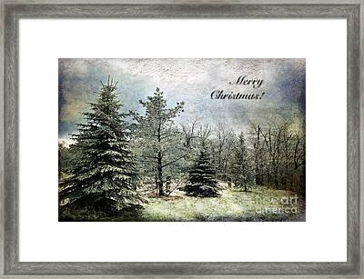Frosty Christmas Card Framed Print by Lois Bryan