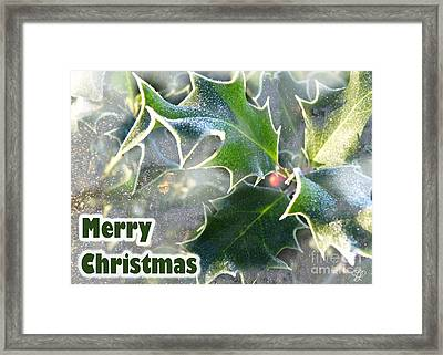 Framed Print featuring the photograph Frosty Holly by LemonArt Photography