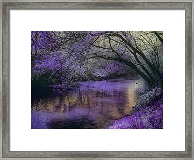 Frosty Lilac Wilderness Framed Print by Michele Carter