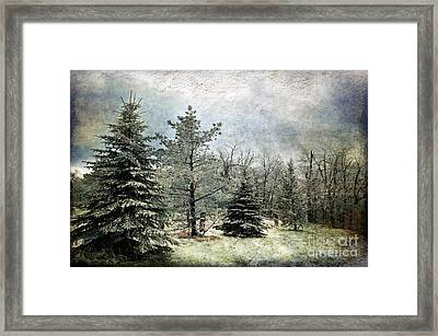 Frosty Framed Print by Lois Bryan