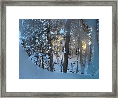 Frosty Morn Framed Print by David and Lynn Keller