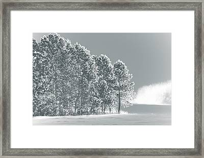 Framed Print featuring the photograph Frosty Morning by WB Johnston