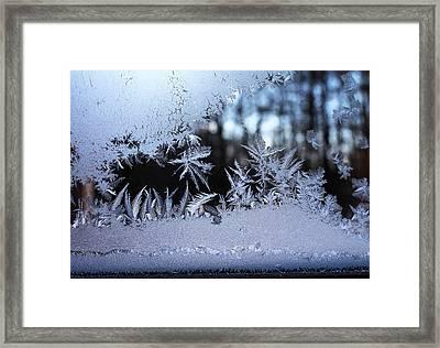 Frosty Morning Window Framed Print by Liz Allyn
