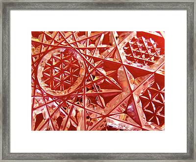 Frosty Red Framed Print by Bonnie See