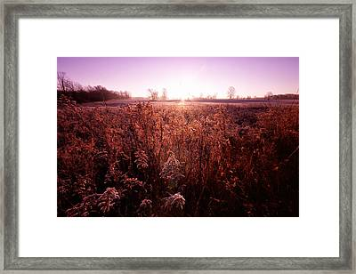 Framed Print featuring the photograph Frosty Sunrise by Lars Lentz