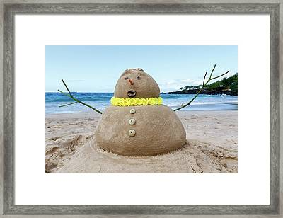 Frosty The Sandman Framed Print