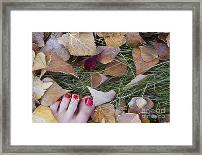 Frosty Toes Framed Print