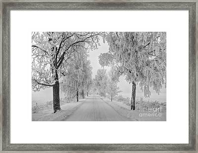Frosty Winter Morning Framed Print