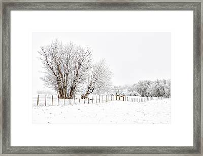 Frosty Winter Scene Framed Print